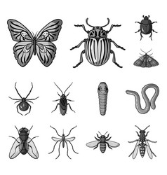Different kinds of insects monochrome icons in set vector