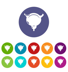 human bladder icons set color vector image