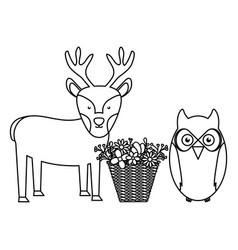 Owl bird and reindeer with basket flowers vector