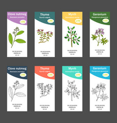 Set of essential oil labels vector