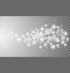 snowflakes in different shapes and forms vector image