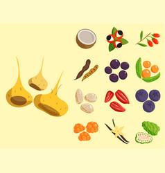 Vegetarian food healthy vegetable and fruits vector