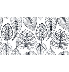 seamless pattern with compositions of hand drawn vector image vector image