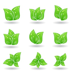 set of green eco leaves isolated on white vector image