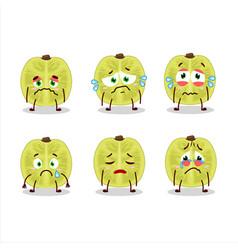 Slice amla cartoon character with sad expression vector
