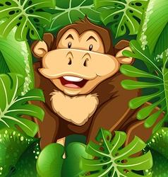 Wild monkey in the bush vector