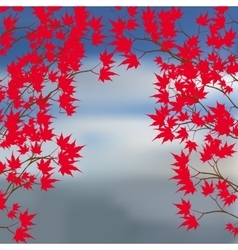 Greeting card of the autumn landscape Red maple vector image vector image