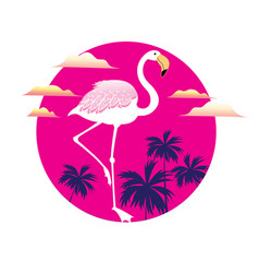 a icon a white flamingo vector image
