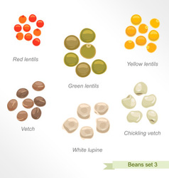 Beans and peas third icon set vector