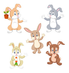 collection of the rabbits vector image