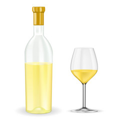 Open bottle of white wine with glass vector