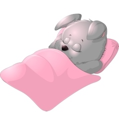 Sleep bunny on a white background vector image