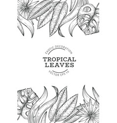 tropical plants banner design hand drawn tropical vector image
