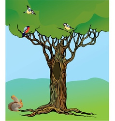 fairy-tale rooted oak tree vector image vector image