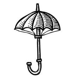 cartoon image of umbrella icon shelter symbol vector image