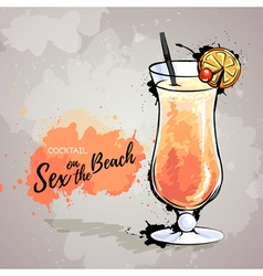 Cocktail sex on the beach vector