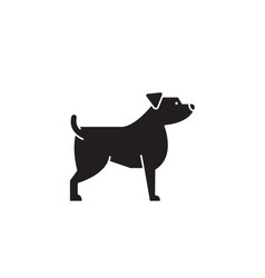 jack russell terrier black concept icon vector image