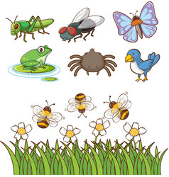 Large set different types insects on white vector