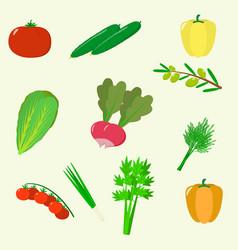 Set of vegetables organic vegetarian healthy food vector