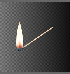 Burning match eps10 vector