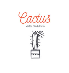 Cactus hand drawn desert houseplant sketch vector