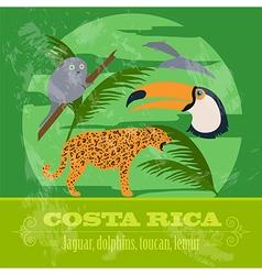 Costa Rica national symbols Dolphins jaguar toucan vector