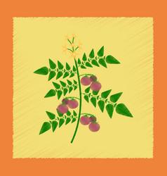 Flat shading style tomato plant vector