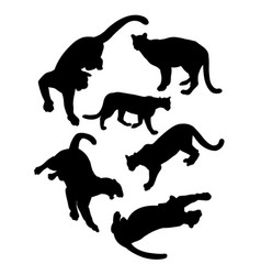 lion wild animal silhouettes vector image
