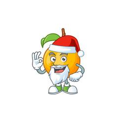 santa seeds nutmeg cartoon on white background vector image