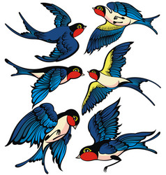 set swallow icons vector image
