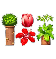 Sticker set of flowers and bush vector image