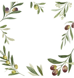 watercolor frame olive branches and vector image