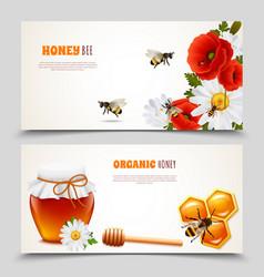 honey banner set vector image vector image