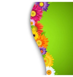 Colorful Gerbers Flower Border vector image vector image