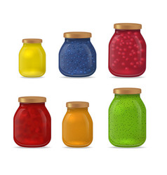 realistic detailed 3d glass jar with jam set vector image