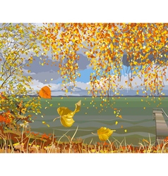 autumn landscape river in fall of the leaves vector image
