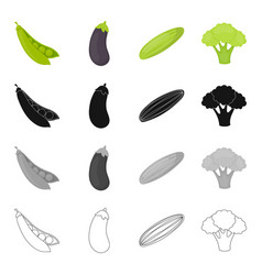 food vegetable garden and other web icon in vector image