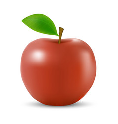 Realistic 3d apple isolated template for your vector