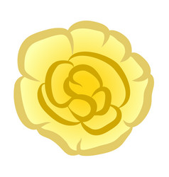 terry impatiens flower vector image