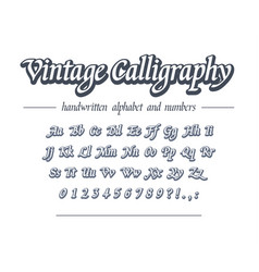 Vintage calligraphy hand drawn outline alphabet vector