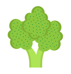 broccoli flat icon vegetable and diet vector image vector image