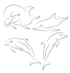 black line dolphin on white background hand drawn vector image