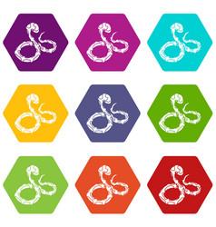 Boa snake icons set 9 vector