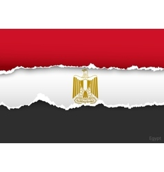 design flag egypt from torn papers with shadows vector image