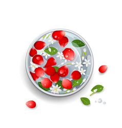 Happy songkran festival thailand rose petals vector