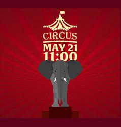 Set circus banner circus ticket amazing show vector