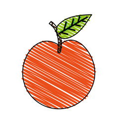 Whole apple fruit icon image vector