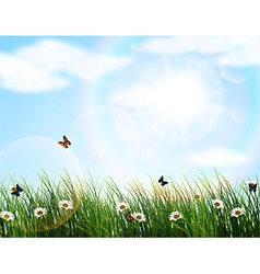 Nature background of Beautiful vector image