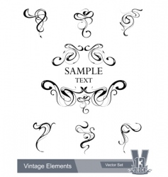 set of vintage design elements vector image vector image