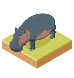 Hippo isometric icon2 vector image